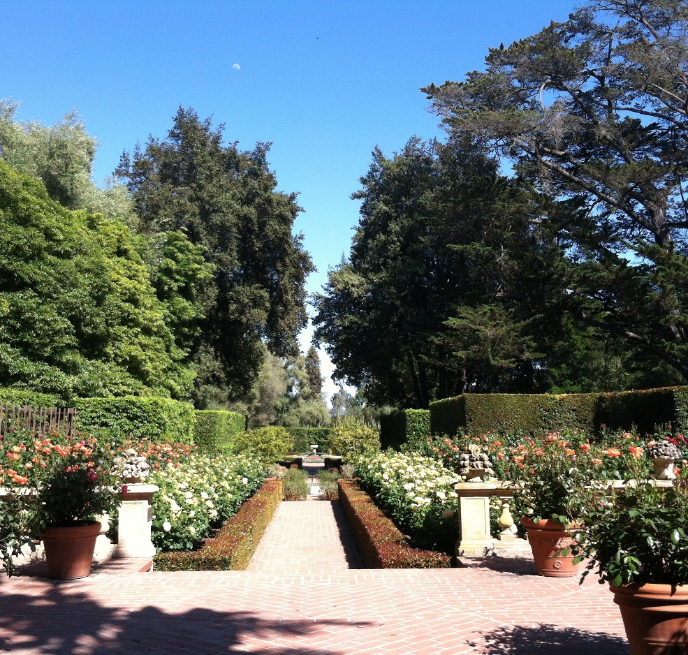Lotusland - Rose Garden