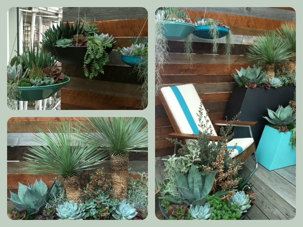 POT Inc - Small Space Show Garden