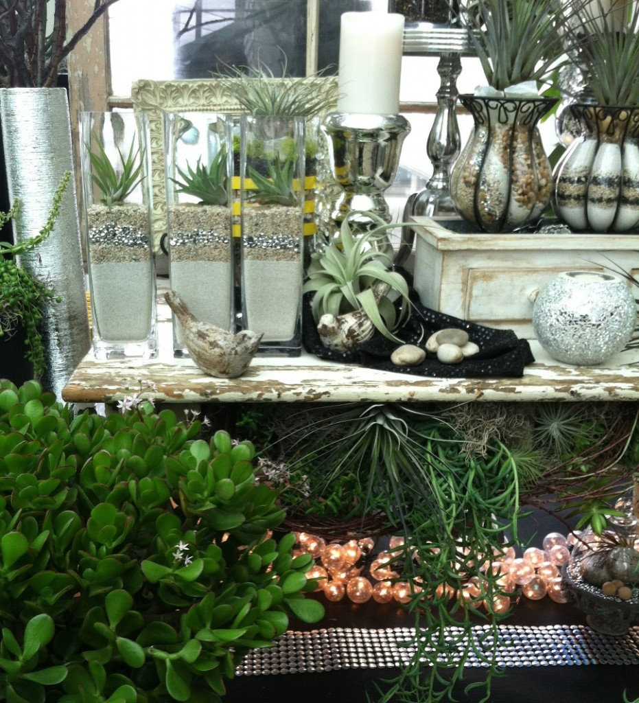 Bellevue Nursery - Small Space Show Garden