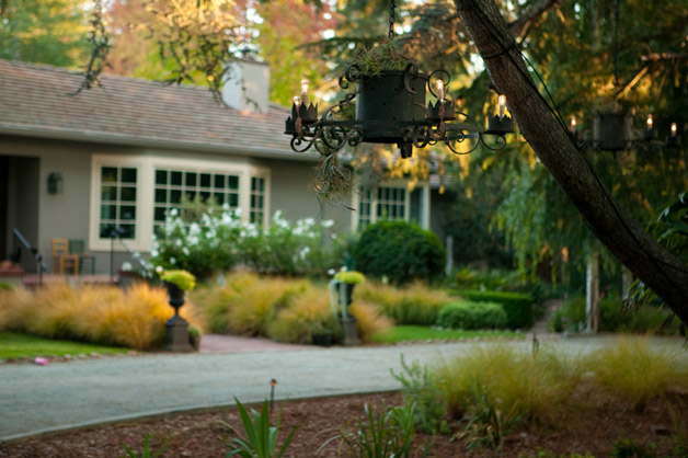 Shelby Lane Garden Photo, MB Maher