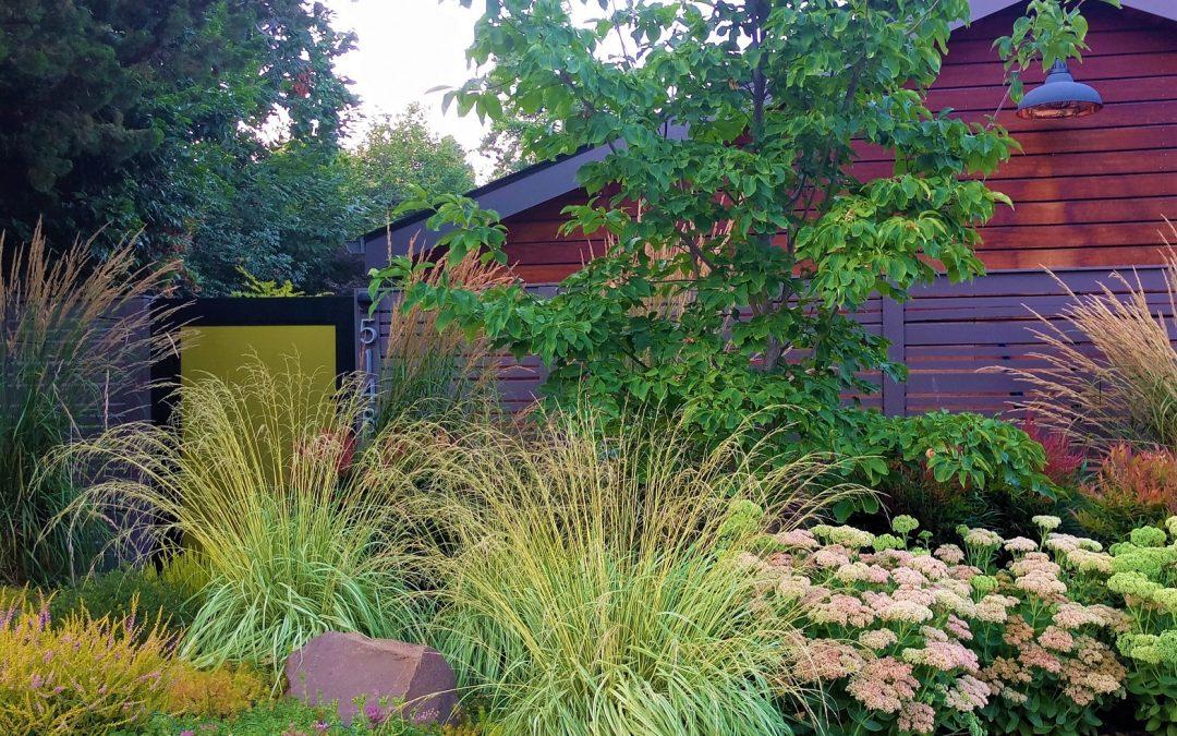 2019 A Year To Remember Olander Garden Design